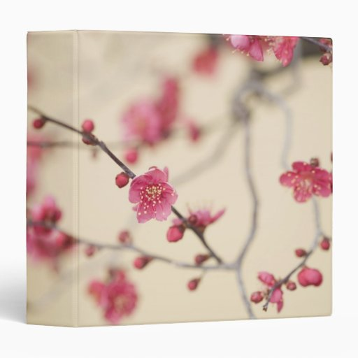 Plum Blossoms Binders