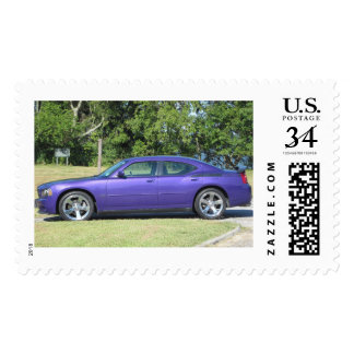 Plum Crazy Charger Stamp