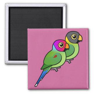 Plum-headed Parakeet Pair 2 Inch Square Magnet