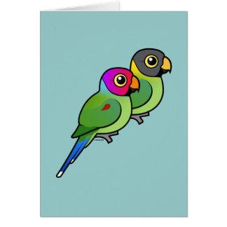 Plum-headed Parakeet Pair Card
