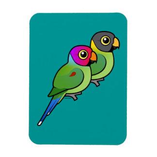 Plum-headed Parakeet Pair Rectangular Photo Magnet