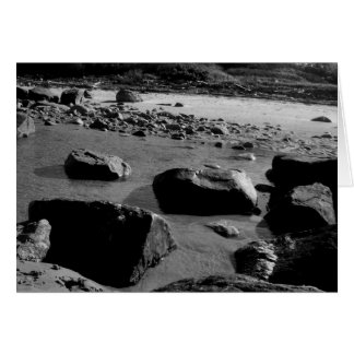 Plum Island Rocks Card