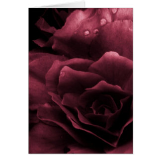 Plum Red Close Up of a Double Begonia Card