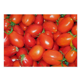Plum Tomatoes Posters