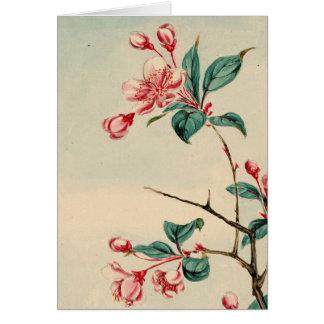 Plum tree blossoms Card