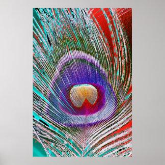 Pluma 3 del pavo real póster