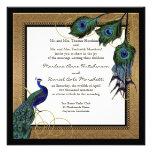 Pluma 7 del pavo real del vintage - boda elegante  comunicado