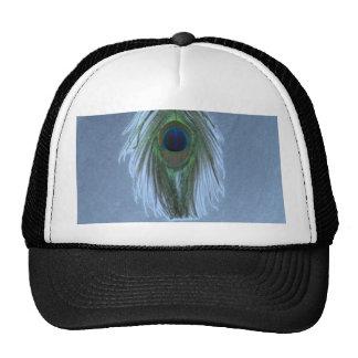 Pluma azul D del pavo real Gorras