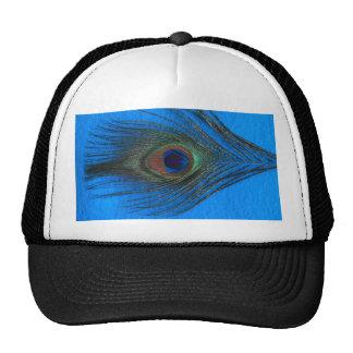 Pluma azul del pavo real del fondo gorros