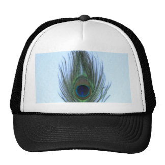 Pluma azul del pavo real gorra