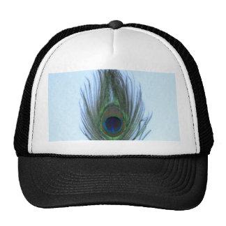 Pluma azul del pavo real gorras