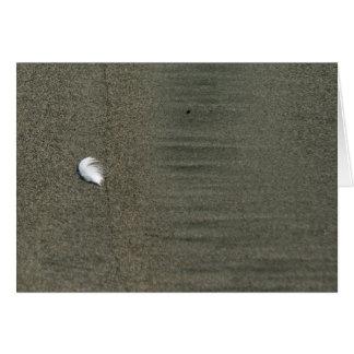 Pluma blanca mullida en tarjeta de felicitación de