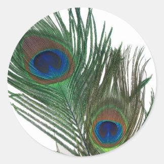Pluma blanca preciosa del pavo real pegatina redonda