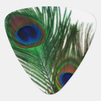 Pluma blanca preciosa del pavo real plectro