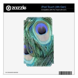 pluma de cola verde y azul del pavo real iPod touch 4G calcomanías