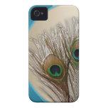 Pluma de color topo moderna del pavo real iPhone 4 protector