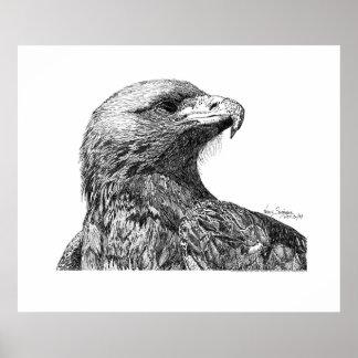 Pluma de Eagle y dibujo de la tinta Póster