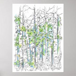 Pluma de la arboleda del árbol de Aspen e impresió Poster