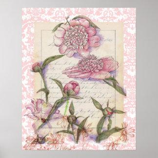 Pluma de la flor del Peony y dibujo rosados del co Póster