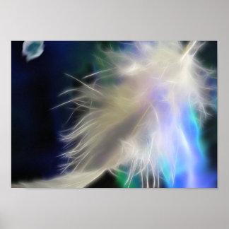 Pluma del ángel poster