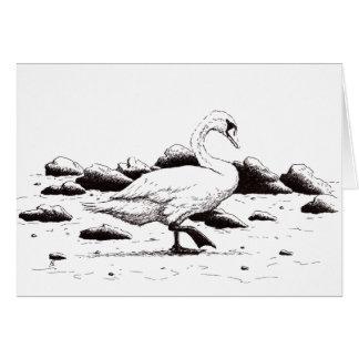 pluma del cisne y dibujo varados del pájaro de la tarjeta de felicitación