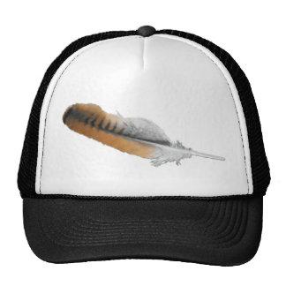 pluma del halcón de la Rojo-cola Gorra
