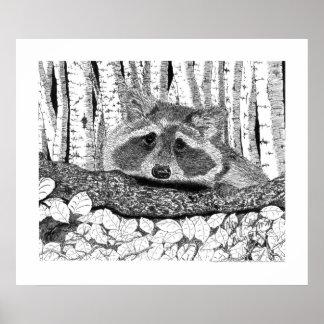 Pluma del mapache y dibujo de la tinta póster