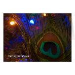 Pluma del navidad del pavo real tarjetón