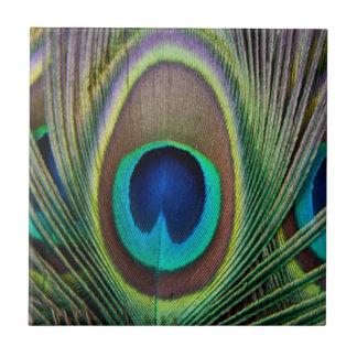 Pluma del pavo real teja  ceramica