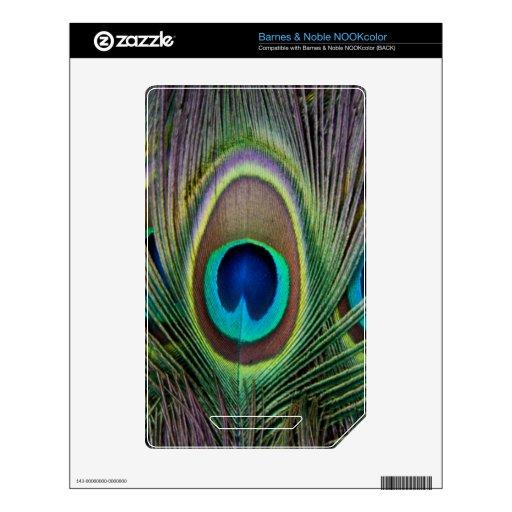 Pluma del pavo real calcomanía para el NOOK color