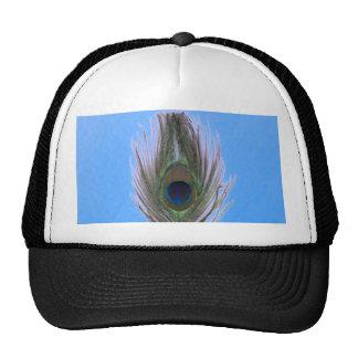 Pluma del pavo real de la lila en azul gorro