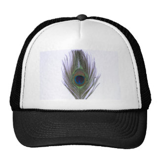 Pluma del pavo real de la lila gorras de camionero