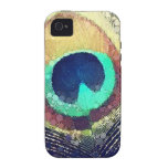 Pluma del pavo real de Love2Snap Case-Mate iPhone 4 Carcasas