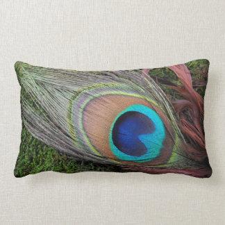 Pluma del pavo real/decoración verde del musgo cojín