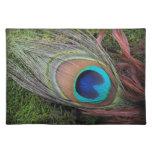 Pluma del pavo real/decoración verde del musgo manteles individuales