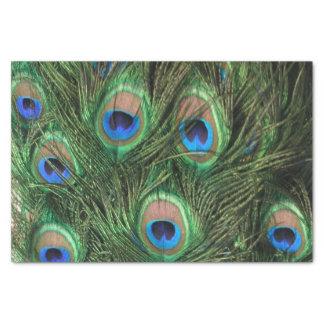 Pluma del pavo real papel de seda pequeño