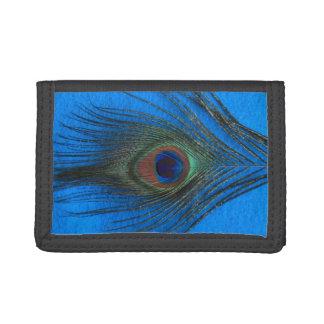 Pluma del pavo real en azul