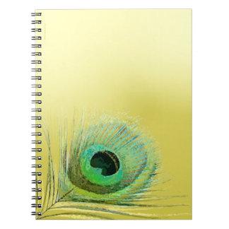 Pluma del pavo real en el oro libro de apuntes
