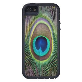 Pluma del pavo real iPhone 5 carcasas