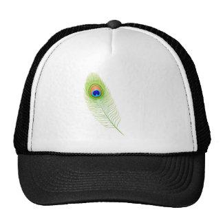 Pluma del pavo real gorra