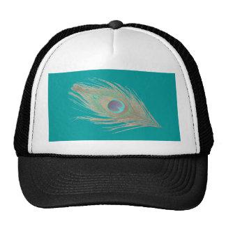 Pluma del pavo real gorras