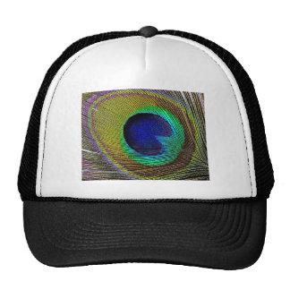 Pluma del pavo real gorras de camionero