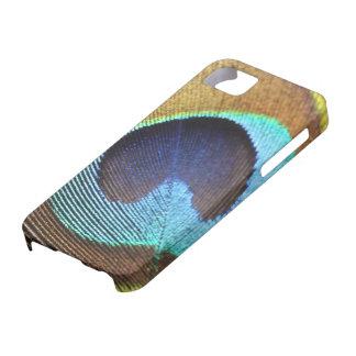 Pluma del pavo real iPhone 5 fundas