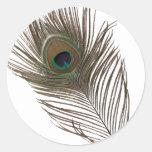 Pluma del pavo real pegatinas redondas