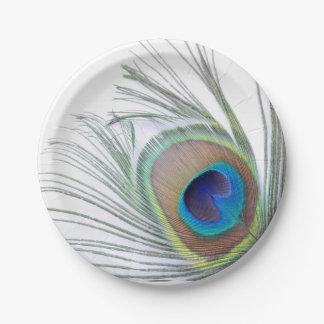 Pluma del pavo real plato de papel