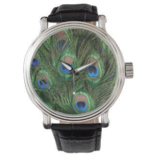 Pluma del pavo real relojes de pulsera