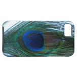 Pluma elegante del pavo real iPhone 5 Case-Mate carcasas