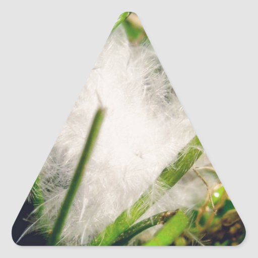 Pluma macra pegatina de triangulo personalizadas