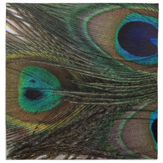Pluma magnífica del pavo real servilletas