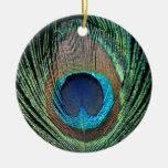 Pluma oscura del pavo real adorno de navidad